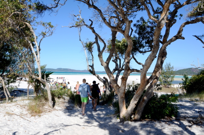 People walking to the beach on the Whitsunday Islands