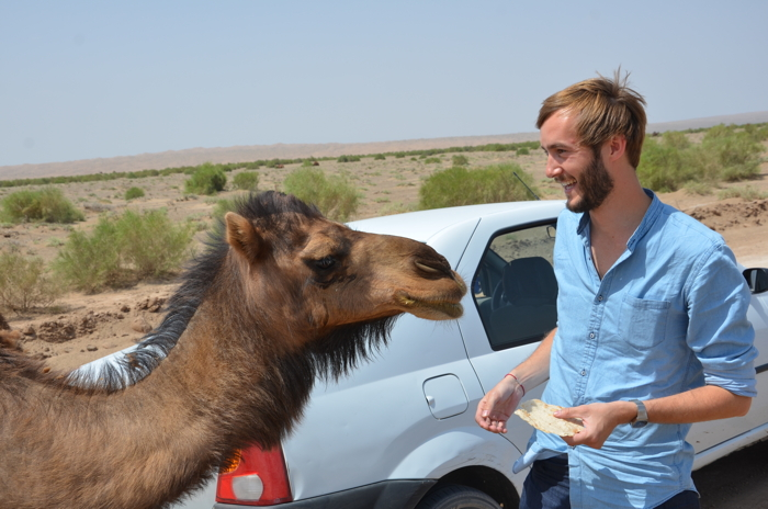 Anekdotique 2014 Travel Retrospective: In Iran with a Camel
