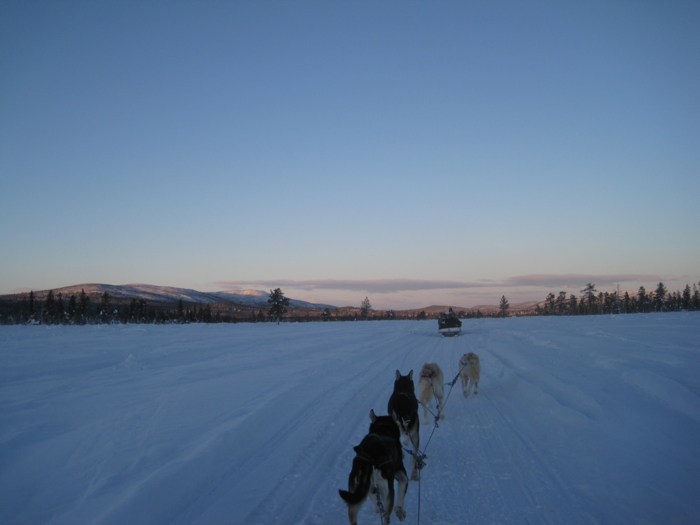 With huskies to the Northern Lights at Kiruna in Sweden