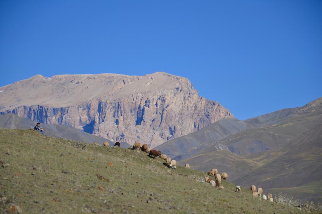 azerbaijan travel Xinaliq shephard