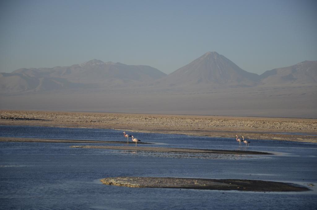 Sehenswürdigkeiten Chile wie die Atacama Wüste