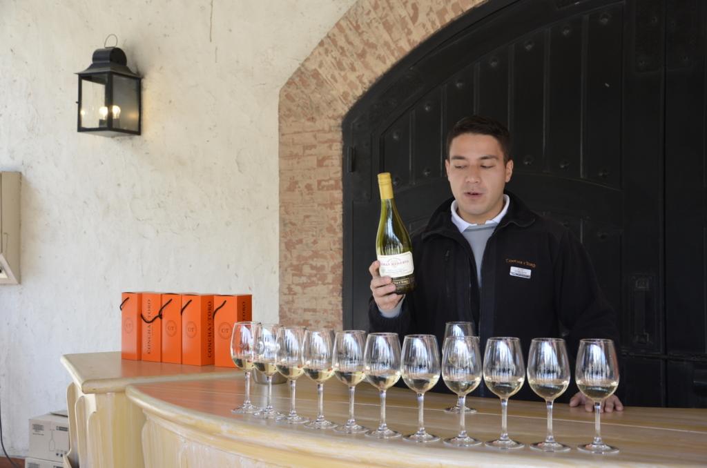 Sehenswürdigkeiten Chile und Wein Tasting bei Casillero del Diablo